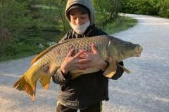 carpe-Killian-12kg500